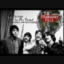 『Strawberry Fields Forever』を日本語で歌ってみた The Beatles in Japanese