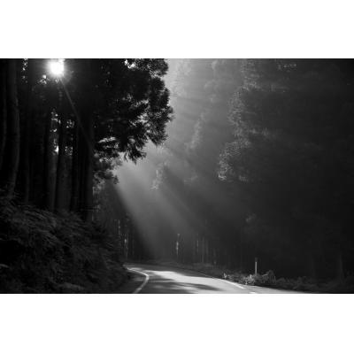 国道352号線にさす朝日(ニコニコモンズ)