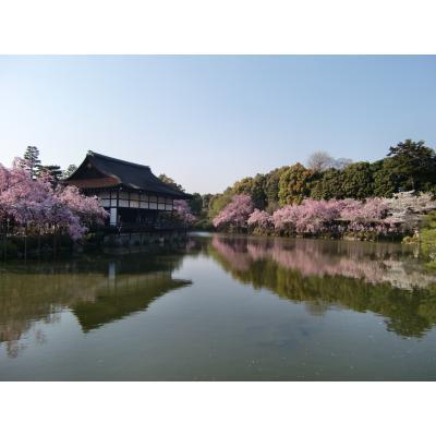 2009年春 京都平安神宮