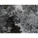 背景 雪山道 其の壱