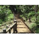 登り木造階段②