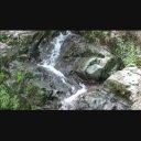 【動画素材】谷川の流れ【夏】 ループ 1