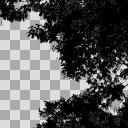 木の素材 黒