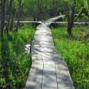 西岡公園2