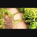 石の道を歩く【4K UltraHD】