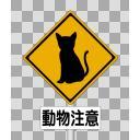 動物注意 猫
