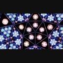 【LZ006】星の電飾