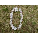 今年も散った桜で数字0