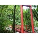 山の中のつり橋