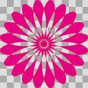 ガーベラ【ピンク】
