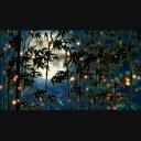 満月の竹林