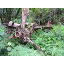 旧大戦中の爆撃機