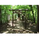 森林の中にある小さな神社