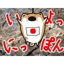 日本応援犬